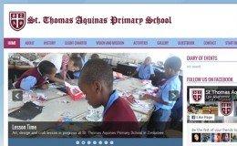 web design zimbabwe web development projects